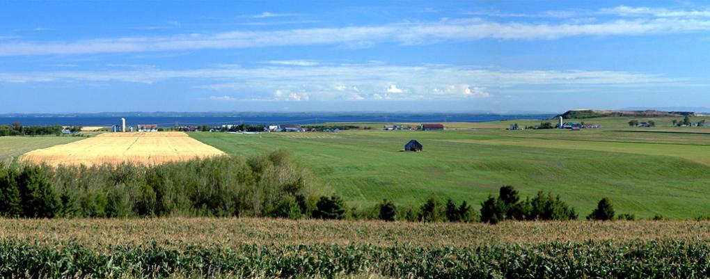 Venez profiter de notre belle terrasse avec vue sur le Lac St-Jean!